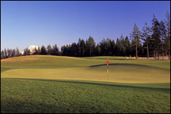 Hole No. 8 - Nisqually